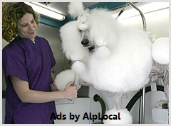 AlpLocal Pet Grooming Mobile Ads