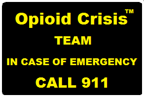 Alphabet - The Opioid Crisis Team